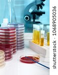 test plates and equipment for... | Shutterstock . vector #1068905036