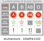 blood group  blood type  red... | Shutterstock .eps vector #1068961103