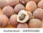 lychee tropical fruit peel out... | Shutterstock . vector #1069032680