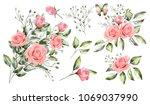 watercolor drawing.  botanical... | Shutterstock . vector #1069037990
