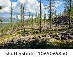 mountain taiga on the putorana... | Shutterstock . vector #1069066850
