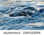flow of water and spray from a... | Shutterstock . vector #1069103096
