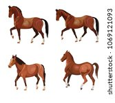 horses in various poses . set... | Shutterstock .eps vector #1069121093