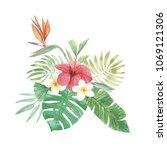 watercolor tropical hibiscus... | Shutterstock . vector #1069121306