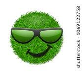 green grass field 3d. face wink ... | Shutterstock .eps vector #1069122758