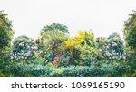 summer garden landscape with... | Shutterstock . vector #1069165190