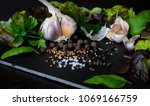 garlic  pepper  salt and herbs... | Shutterstock . vector #1069166759