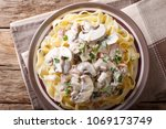 noodles with creamy sauce ... | Shutterstock . vector #1069173749