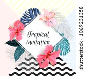 summer tropical background... | Shutterstock .eps vector #1069231358
