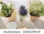 on festive table in wedding... | Shutterstock . vector #1069239419