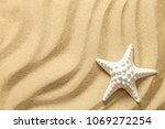 summer  sand background with... | Shutterstock . vector #1069272254