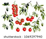 black  olives branches and... | Shutterstock .eps vector #1069297940