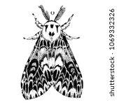 hand drawn illustration of the... | Shutterstock .eps vector #1069332326