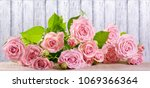 rose flowers on background of... | Shutterstock . vector #1069366364