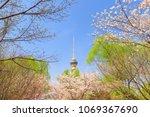 Beijing Yuyuantan Park Spring...