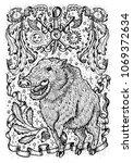 pig symbol with heraldic weapon ... | Shutterstock .eps vector #1069372634