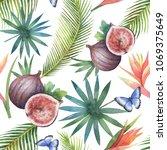 watercolor seamless pattern of...   Shutterstock . vector #1069375649