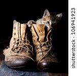 Kitten In A Boot On A Black...
