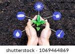 hands holding a plant sapling... | Shutterstock . vector #1069464869