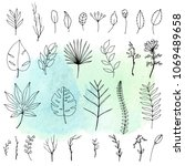 set of hand drawn tropical...   Shutterstock . vector #1069489658