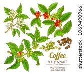 coffee vector set | Shutterstock .eps vector #1069490966