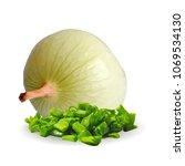 fresh  nutritious  tasty onion. ... | Shutterstock .eps vector #1069534130