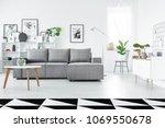 geometric carpet in spacious... | Shutterstock . vector #1069550678