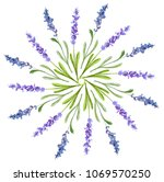 lavender collection  painted in ... | Shutterstock . vector #1069570250