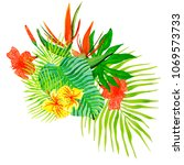 hand drawn watercolor tropical... | Shutterstock . vector #1069573733