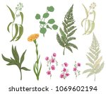 set of pink  yellow flowers and ... | Shutterstock .eps vector #1069602194