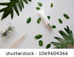 cosmetic skincare nature... | Shutterstock . vector #1069604366