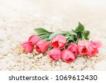 bouquet of big beautiful pink...   Shutterstock . vector #1069612430