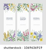 set of vertical banners... | Shutterstock .eps vector #1069636919