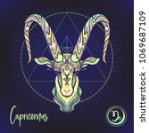 Capricorn Zodiac Sign....