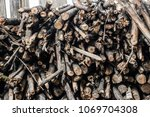 firewood for the winter  stacks ... | Shutterstock . vector #1069704308