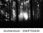 dark black and white forest ...   Shutterstock . vector #1069732634