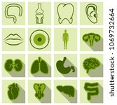 set of medecine icons in flat... | Shutterstock .eps vector #1069732664