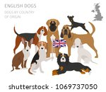 dogs by country of origin.... | Shutterstock .eps vector #1069737050