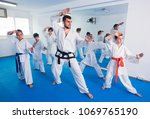 young coach is training... | Shutterstock . vector #1069765190