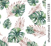 watercolor tropical seamless... | Shutterstock . vector #1069771118
