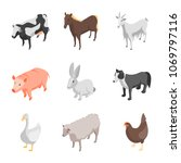 farm animals 3d icons set... | Shutterstock .eps vector #1069797116