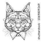 hand drawn portrait of cat in... | Shutterstock .eps vector #1069809269