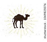 retro camel silhouette logo.... | Shutterstock .eps vector #1069825076