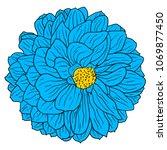 beautiful color sketch  dahlia... | Shutterstock .eps vector #1069877450