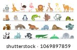 Stock vector animals families set cartoon animals with babies 1069897859