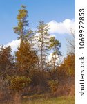 autumn landscape. edge of the... | Shutterstock . vector #1069972853