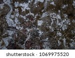 Small photo of An old concrete wall covered with white patina