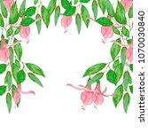 watercolor illustration of... | Shutterstock . vector #1070030840
