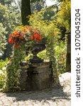 Small photo of Mainau Garden - absolute calm
