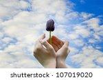 black tulip in hands | Shutterstock . vector #107019020